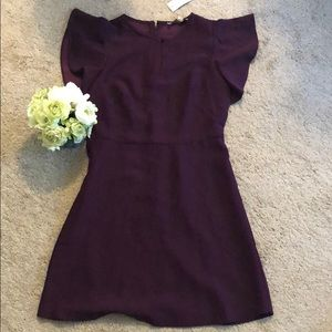 Loft purple dress